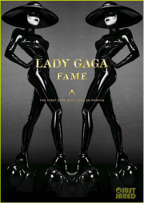 lady-gaga-latex-for-new-fame-campaign-ad-01 (496x700, 77Kb)