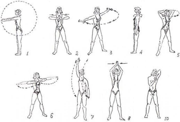 Упражнения с гантелями на увеличение груди и бедер эффективные упражнения.