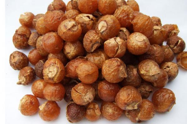 мыльные орешки (600x400, 366Kb)