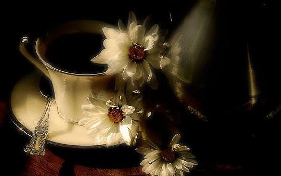 Good-night--Good-Morning--good--dobro-jutro--morning--black&white--dobro-jutro'n--bellas-2_large (550x344, 33Kb)