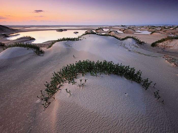 Лучшие достопримечательности Австралии - Остров Фрейзера 1 (700x525, 119Kb)