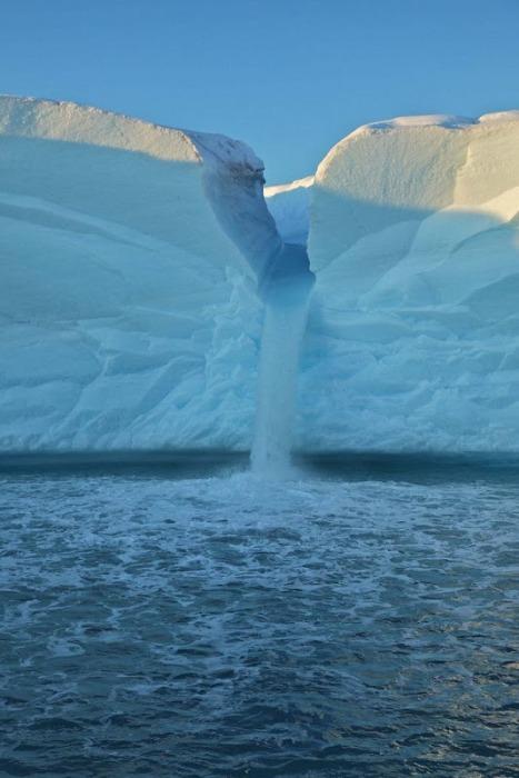 Свальбард4 (467x700, 81Kb)