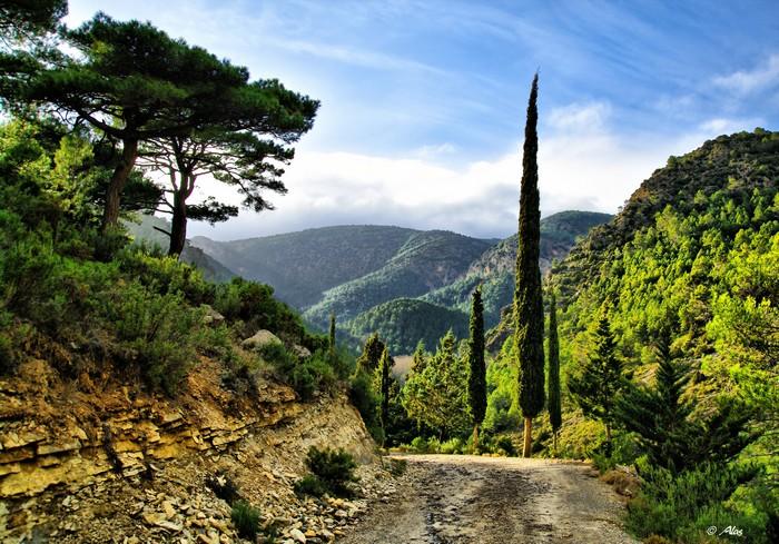Живописные фото Испании 58 (700x489, 154Kb)