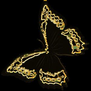 бабочка черный шелк золото (300x300, 94Kb)
