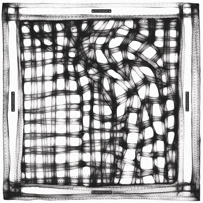 Шейный платок, как модный аксессуар 26 (700x700, 163Kb)