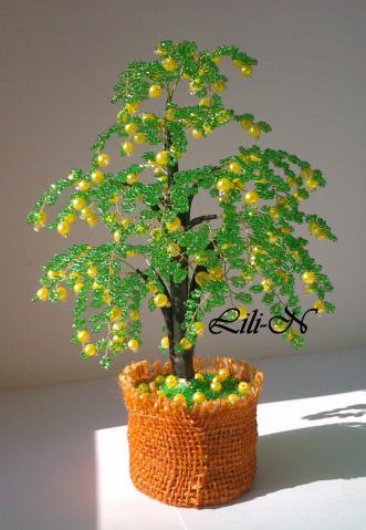 734 просмотров.  Альбом пользователя Lili-N. нра. жёлтый. дерево объёмное.  Вот такая маленькая, урожайная у меня...