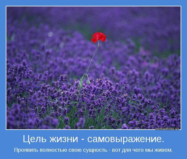 мотиваторы смысл жизни/4552399_motivatori_smisl_jizni (644x546, 53Kb)