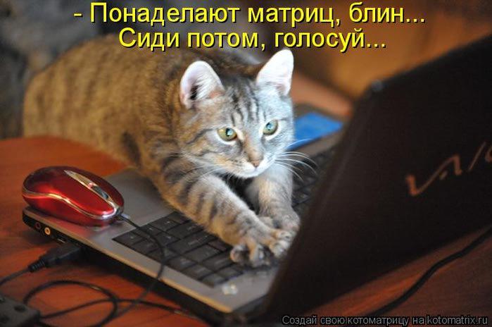 kotomatritsa_aBq (700x464, 44Kb)