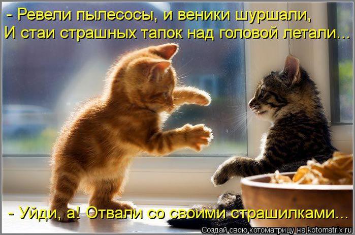 kotomatritsa_r (700x462, 64Kb)