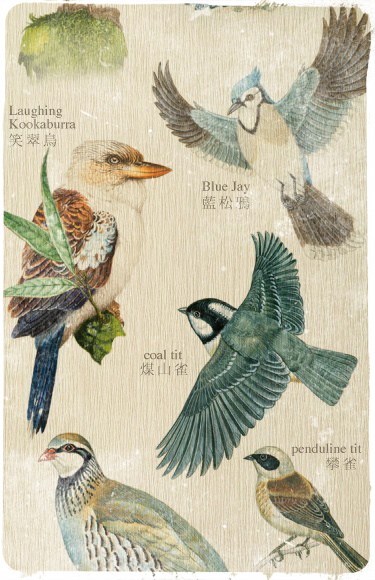 птица (375x580, 126Kb)