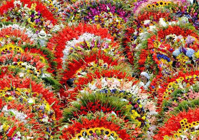 the-flower-festival (650x457, 370Kb)