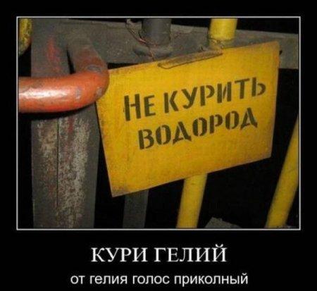 1338950205_demotivators_06 (450x413, 30Kb)