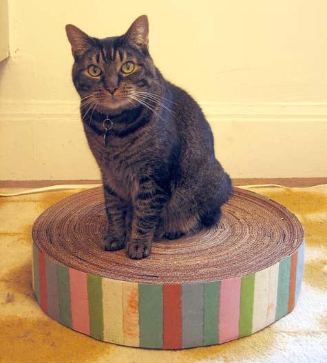 recycled-cardboard-cat-pad (475x527, 31Kb)