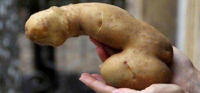 Картошка с хуем