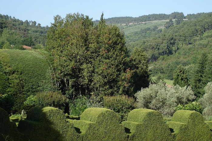 Дворец Каза-ди-Матеуш - Casa de Mateus 48910