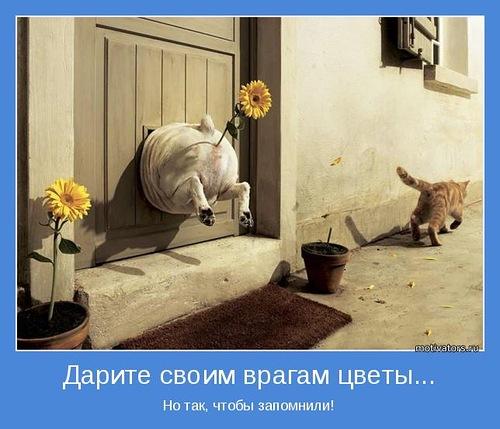 0_792d2_87a40dcc_L (500x429, 67Kb)