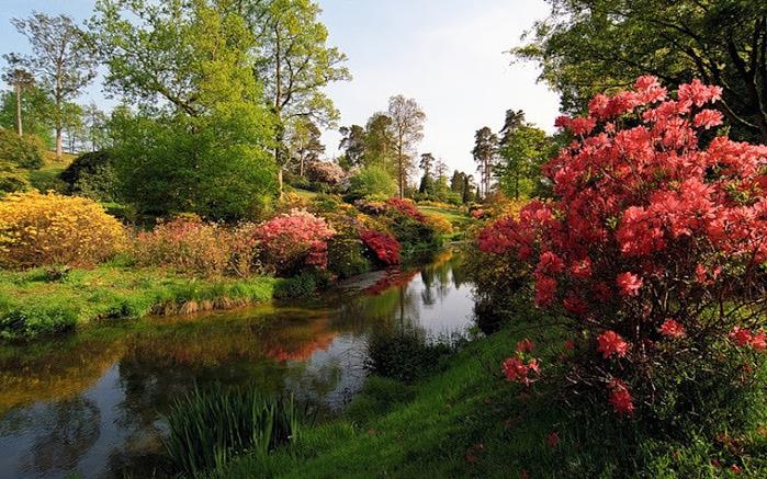Leonardslee Gardens (Леонардсли – Гарденз) ....jpgСад Леонардсли, Англия (700x437, 190Kb)