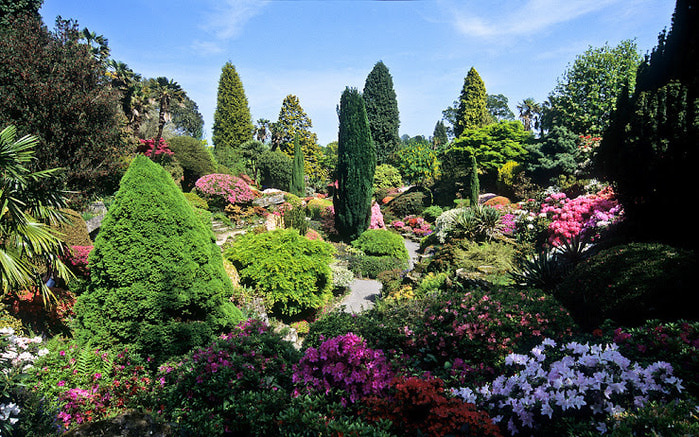 Leonardslee Gardens (Леонардсли – Гарденз) 07.jpgСад Леонардсли, Англия (700x437, 214Kb)