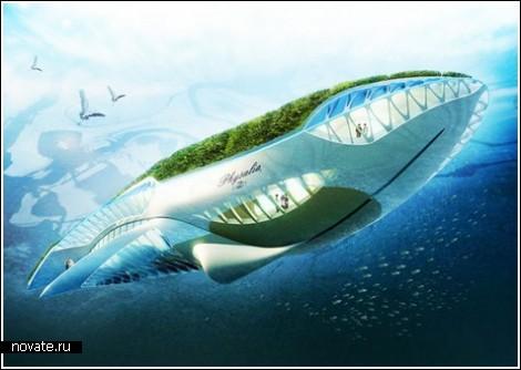 whaleparis2 (470x334, 37Kb)