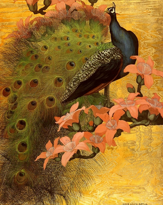 павлин картины художников (554x700, 390Kb)