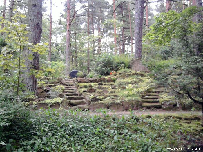 Кладбище (700x525, 357Kb)