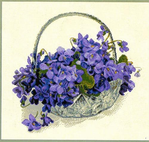 Комнатные цветы. уход за комнатными растениями фиалка.