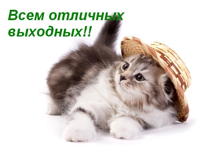 64753794_vuyh (700x496, 41Kb)
