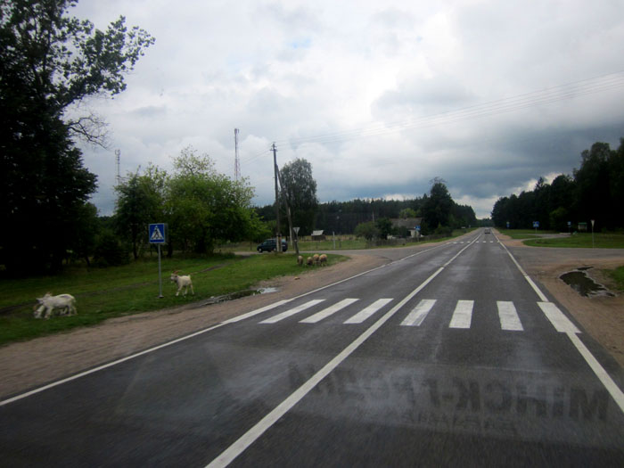 Белорусские дороги 06 (700x525, 94Kb)