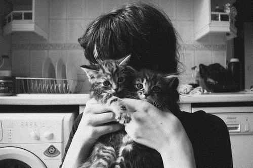 Фото на аву вк для девушек с животными