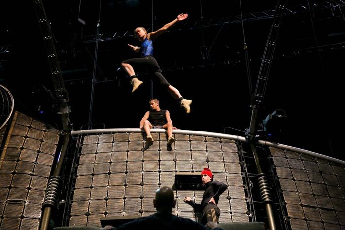 Cirque du Soleil Dralion 8 (700x467, 58Kb)