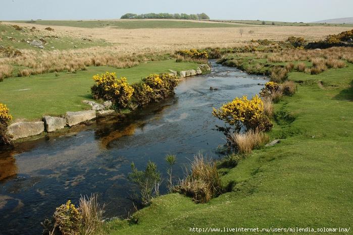 dartmore_river (700x465, 289Kb)