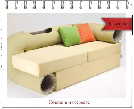 3518263_shop (434x352, 145Kb)