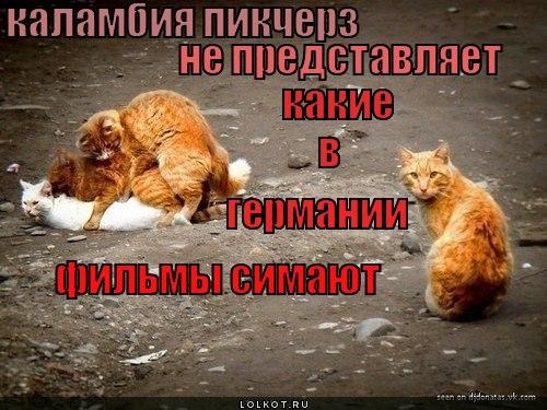 kalambiya-pikcherz-_1341418696 (500x375, 63Kb)