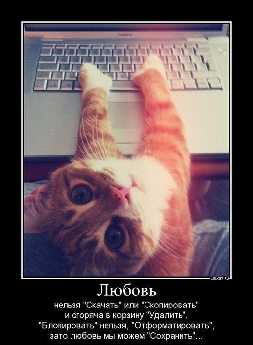 lyubov-my-mozhem-sohranit..._1326520404 (513x700, 55Kb)