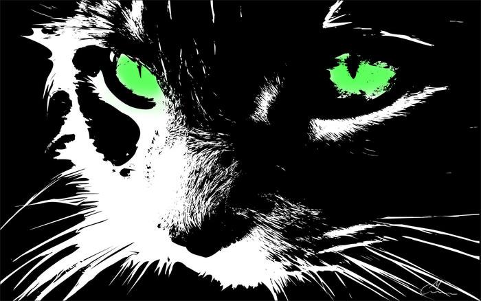 1345430438_cat_in_FF (700x438, 97Kb)