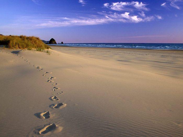 Sledy-na-peske (700x525, 42Kb)