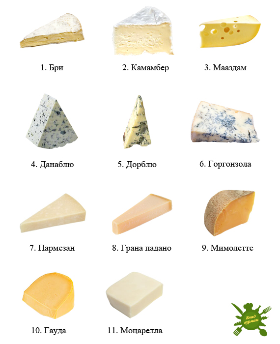 cheeses-our (570x700, 125Kb)