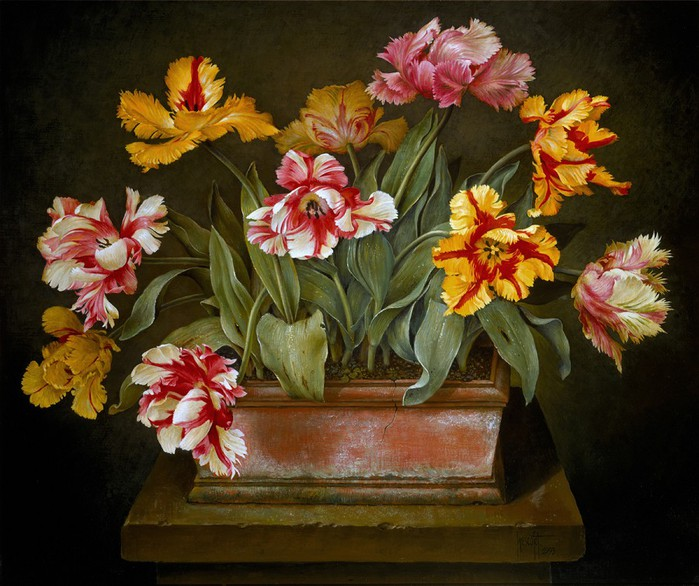 MIXED PARROT TULIPS IN CLAY POT 66x76 cms oil on canvas on panel 1993(1) (700x586, 119Kb)