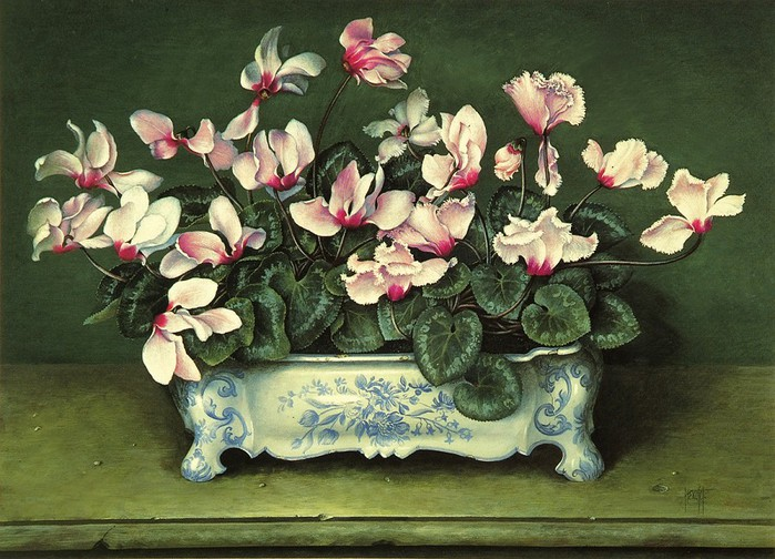PALE PINK CYCLAMEN IN BLIE AND WHITE TROUGH61x81Gouache1989 (700x504, 123Kb)