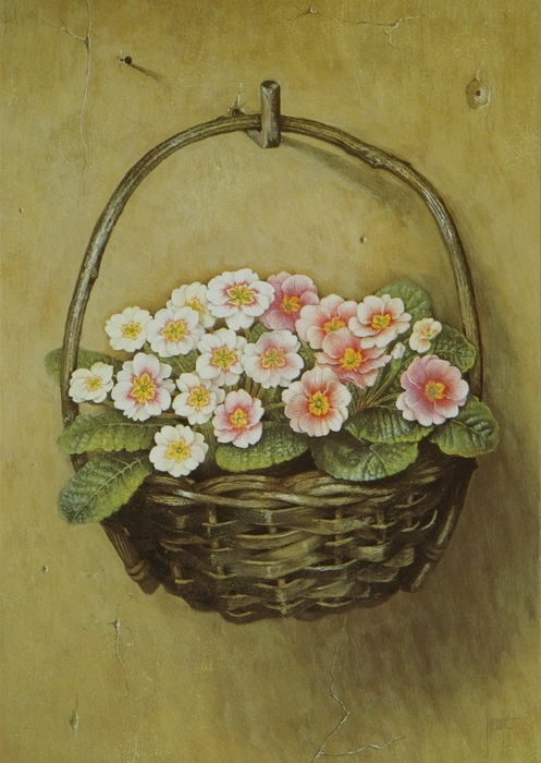 PINK POLYANTHUS HANGING FROM A WALL63x46 cms Gouache1989 (497x700, 263Kb)