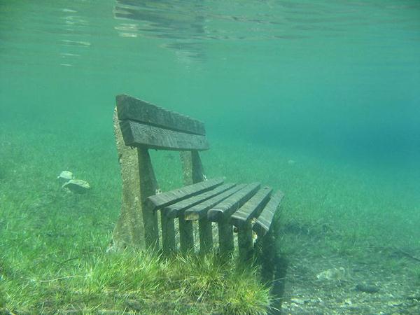 underwater park 8 (600x450, 36Kb)