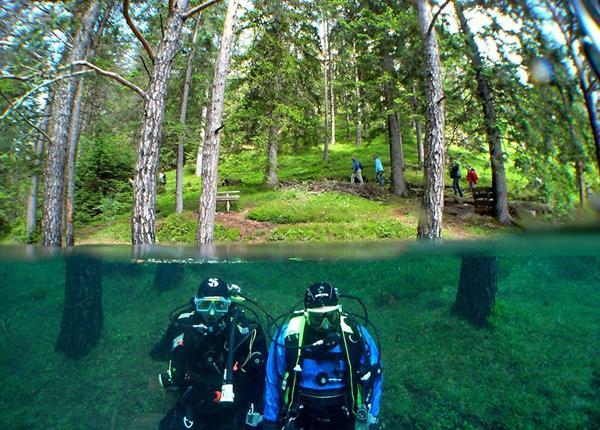 underwater park 16 (600x430, 72Kb)