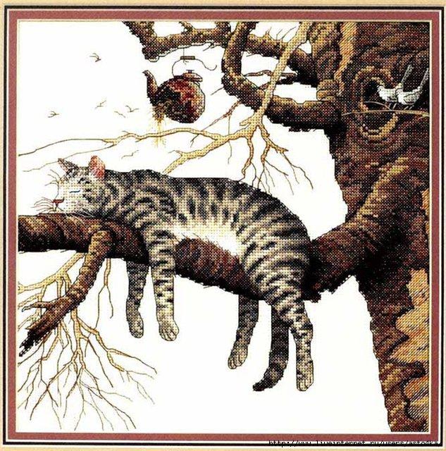 Кот (633x640, 320Kb)