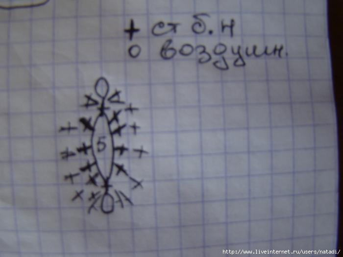 DSC02635 (700x525, 194Kb)