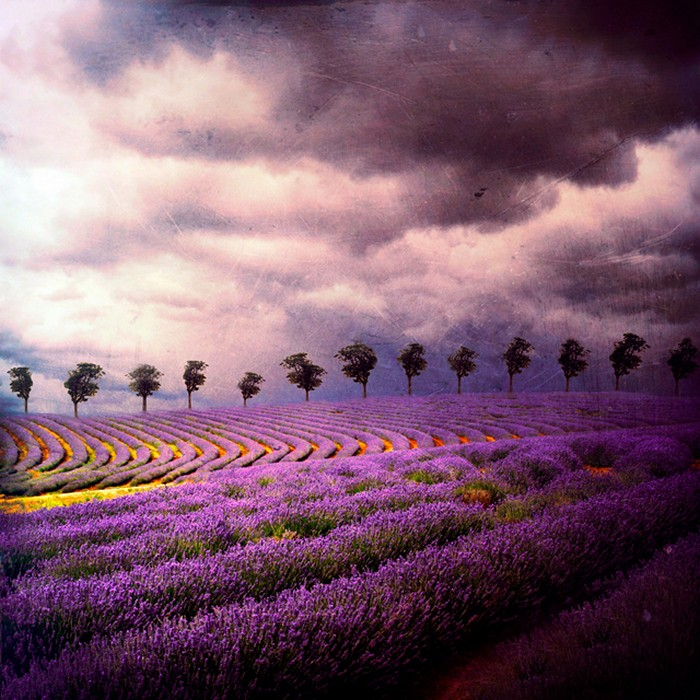 3925073_Barbara_Florczyk_art_1 (700x700, 148Kb)