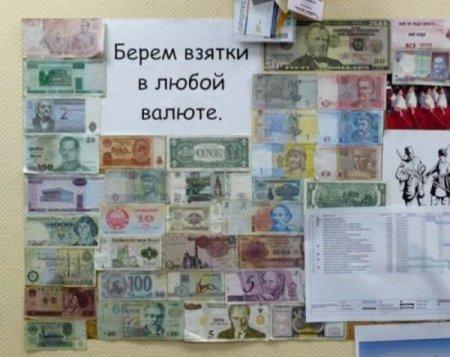 1300796586_1286572682_podborka_prikolov_v76-5 (450x357, 38Kb)