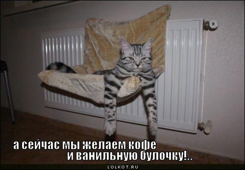 kofe-i-vanilnuyu-bulochku_1304020715 (500x347, 26Kb)