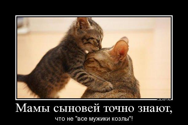 ne-vse-muzhiki-kozly_1334323463 (612x407, 34Kb)