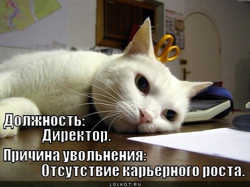 otsutstviye-karernogo-rosta_1341946146 (500x375, 56Kb)
