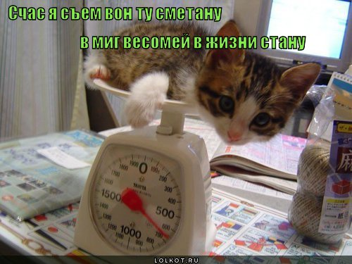 sem-smetanu_1335799366 (500x375, 47Kb)